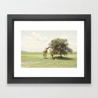 giraffes::rwanda Framed Art Print
