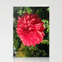 Blooming Just For You Stationery Cards