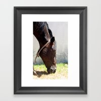 horse t Framed Art Print