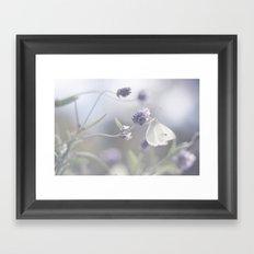 Lavender loving butterfly Framed Art Print