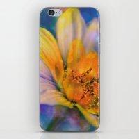 Dream-Flower iPhone & iPod Skin