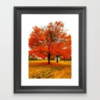 Changing Colors. Framed Art Print