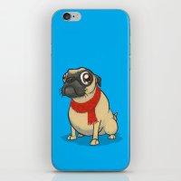 Pug with a scarf iPhone & iPod Skin