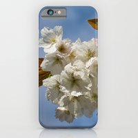 White Cherry Blossom iPhone 6 Slim Case