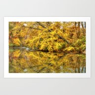Reflections Of Autumn Art Print