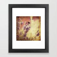 {flight Of The Bumblebee… Framed Art Print