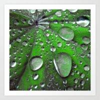 Water Drops Abstract VI Art Print
