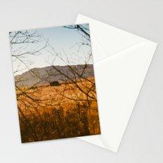 Buffalo Tribe Stationery Cards