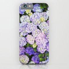 Crazy In Love Slim Case iPhone 6s