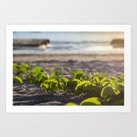 Follow me to the Sea Art Print