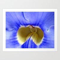 blue (Mauritius) Art Print
