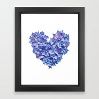 Hydrangea Je t'aime Framed Art Print