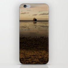 Tropic Rust iPhone & iPod Skin