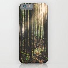 Sun in the Rainforest Slim Case iPhone 6s