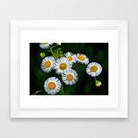 Flowerworks Framed Art Print