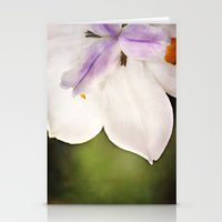 Today Stationery Cards