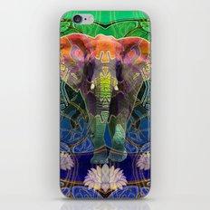 Wandering Elephant iPhone & iPod Skin