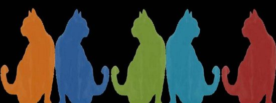 Reflected Images Of A Line Of Cats on Black Art Print