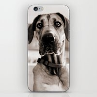 Did Someone Make Popcorn… iPhone & iPod Skin