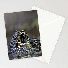 Gator Eye Stationery Cards