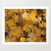 Maple Leaves 2013 Art Print