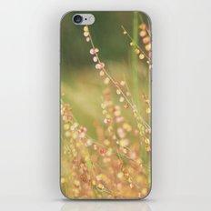 Wild flowers iPhone & iPod Skin