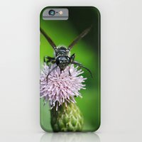 Bee and a flower iPhone 6 Slim Case