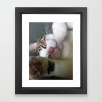 Best Cat that ever lived Framed Art Print