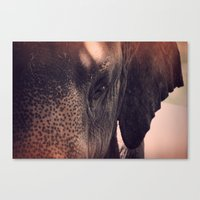 Eyes of the Beholder Canvas Print