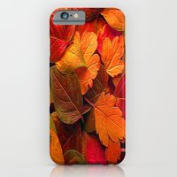 iPhone & iPod Case featuring Autumn Color by Robin Curtiss