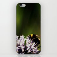 In the green light iPhone & iPod Skin