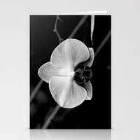 orchid#2 Stationery Cards