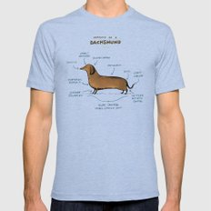 Anatomy Of A Dachshund Mens Fitted Tee Tri-Blue SMALL