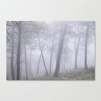 Wander into the foggy forest. Canvas Print