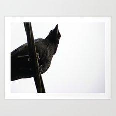 Crow on Wire Art Print