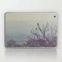 DSC_0536 Laptop & iPad Skin