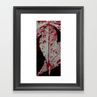 Rain on a leaf Framed Art Print