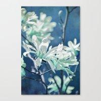 fresh blues Canvas Print