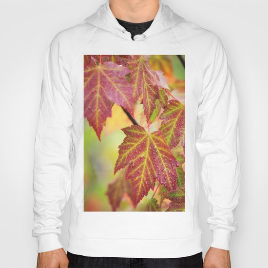 Maple Leaves Hoody