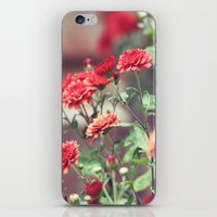 The Red Garden iPhone & iPod Skin