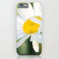 iPhone & iPod Case featuring Smiling in the morning light by Casey VanderMeulen