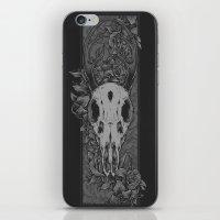 Dried Up iPhone & iPod Skin