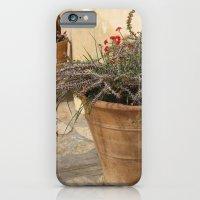 Courtyard Plants iPhone 6 Slim Case