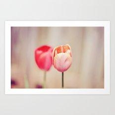 Pair of Tulips Art Print