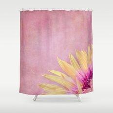 LIKE ICE IN THE SUN Shower Curtain