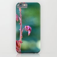 Baby Rose Leaves iPhone 6 Slim Case
