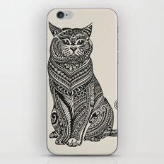 Polynesian British Shorthair cat iPhone & iPod Skin