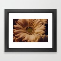 Antique Daisy Framed Art Print