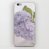 Filled with Delight  iPhone & iPod Skin