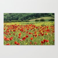 Poppies, Poppies, Poppie… Canvas Print